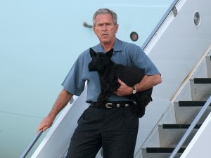 George Bush and Dog